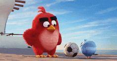 O longa animado de 'Angry birds' estreia no dia 12 de maio de 2016 no Brasil (Foto: Reprodução/Trailer)