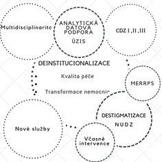 Souhrn projektů v rámci reformy psychiatrické péče. (Deinstitucionalizace_model)