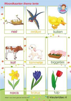 Woordkaarten , thema lente, kleuteridee,preschool spring words, free printable.