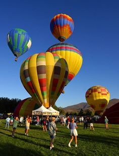 Temecula Valley Balloon and Wine Festival - I've never been up in a hot air balloon, this is definitely a party I want to attend!