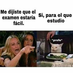 Meme gato en la mesa Here is a compilation of some cat memes, I can imagine my cat answering me like that hahaha. you can find similar pins below. Cute Animal Memes, Cute Animals, Memes Humor, Cat Memes, Happy Anniversary Meme, Playstation, Funny Spanish Memes, Book Memes, Anime