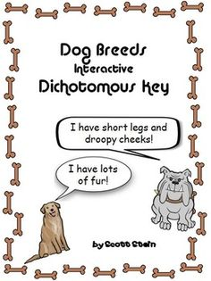 This is not your average PowerPoint! This PowerPoint is a live-working interactive dichotomous key! Each slide has code embedded within it that allows the students to answer yes or no questions about the different types of dog breeds.