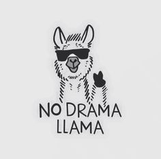 No time for your llama drama ¥