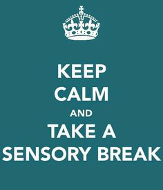 Sensory Toys Make Us Happy! Implementing sensory equipment with students with special needs