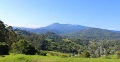 #mttam #mounttamalpais #marincounty #spring #mountiain #view #hike #hiking #outdoors