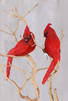 5.99 SALE PRICE! Attach these cheerful Cardinals to natural branches or other holiday decorations for a vibrant display. Fasten these red birds to a Christma...