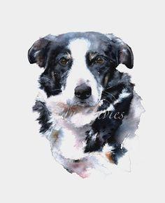 Jane Davies Watercolours