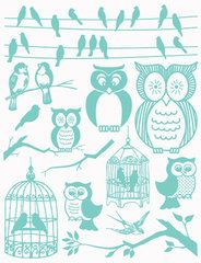 owls and birds stamps