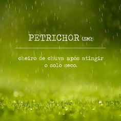 Saio correndo abrir a janela pra sentir o petrichor *----* The Words, More Than Words, Cool Words, Words Quotes, Life Quotes, Sayings, Meaningful Words, Writing Tips, Beautiful Words