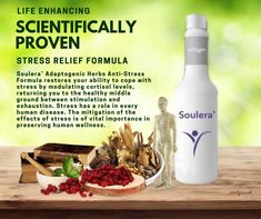 Anxiety Relief, Stress Relief, Depression Support, Coping With Stress, Mushroom Fungi, Muscle Recovery, Cancer Cure, Cortisol, Medical Prescription