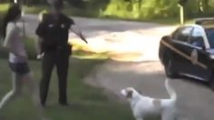 West Virginia Woman Who Stepped Between Cop And Dog To Stop Cop From Killing It Still Facing Charges!!!