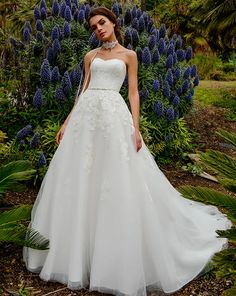 Simple Wedding Dresses, Fascinating Lace & Tulle Sweetheart Neckline A-line Wedding Dress With Lace Appliques & Belt MagBridal Lace Wedding Dress, Wedding Dresses Plus Size, Cheap Wedding Dress, One Shoulder Wedding Dress, Wedding Gowns, Lace Dress, Tulle Wedding, Ball Dresses, Bridal Dresses