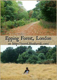 The largest forest within London... #travelblog #photoblog #travelblogger #ttop #VisitLondon #VisitEngland #LoveGreatBritain #Epping