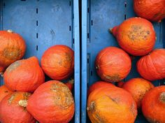 Orange and Blue Orange And Purple, Orange Color, Color Blue, Colour Schemes, Color Combos, Red Contrast Color, Orange Sofa, Sunset Wallpaper, Color Inspiration