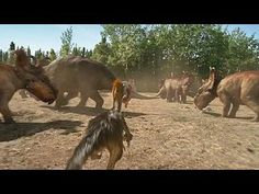 Walking with Dinosaurs: The Movie: Dino Files: Troodon Smarts --  -- http://wtch.it/nuLOh