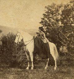 Side saddle, 1880s
