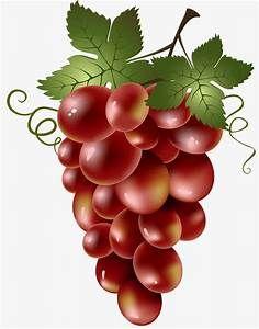 صورة عنب Yahoo Search Results Yahoo Image Search Results Fruit Art Grape Painting Fruit Painting