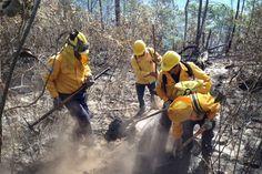Continúan las labores de combate y prevención a incendios forestales en el municipio de Uruapan, a pesar de los diversos brotes de conflagración que han surgido esporádicamente en otras regiones ...