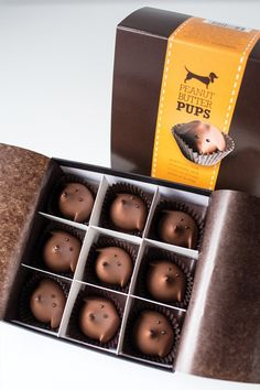 Doxie face chocolates! They look like my Rex!