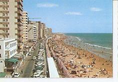 Postal (PostCard) 046462 : Cadiz. Paseo Maritimo y Playa de la Victoria