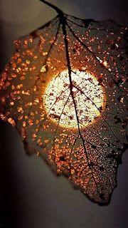 خلفيات ايفون 8 الاصلية Wallpaper Iphone Original Moonlight Photography Creative Photography Nature Photography