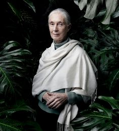 Jane Goodall by Marco Grob