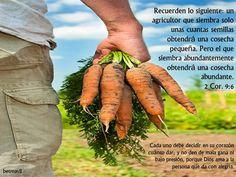 1 Corintios 3:7 No importa quién planta o quién riega; lo importante es que Dios hace crecer la semilla.