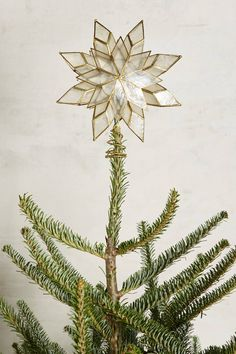 Capiz Star Tree Topper by Anthropologie in Clear Size: One Size Sweaters Christmas Tree Star Topper, Star Tree Topper, Diy Christmas Tree, Holiday Ornaments, Winter Christmas, Christmas Holidays, Christmas Decorations, Christmas Movies, Simple Christmas