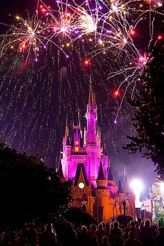 Disney World ~ you're never too old