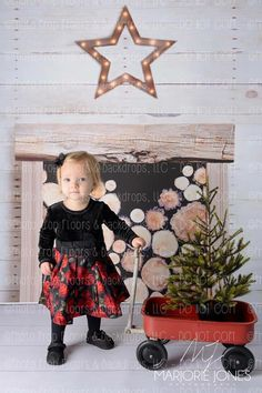 Christmas Photography Backdrop Inspiration With Designs All Available At  Photo Prop Floors U0026 Backdrops, LLC: Http://www.backdropsandfloors.com/Chriu2026