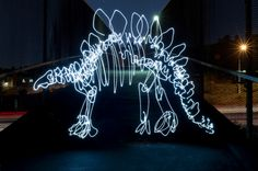 San Diego-based graphic artist Darren Pearson takes light-painting to a whole new level with his Light Fossil series -- long-exposure photos with detailed Light Painting Photography, Art Photography, Exposure Photography, Dinosaur Light, Dinosaur Photo, Dinosaur Images, Dinosaur Pictures, Graffiti, Dinosaur Fossils