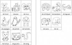 Dit woordweb in het thema huisdieren kun je downloaden op de website van Juf Milou.