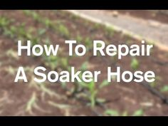 How To Repair A Garden Soaker Hose (& Why I Love Them) - AnOregonCottage.com - YouTube