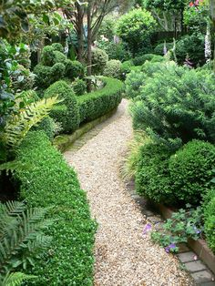 Oh to have pea gravel paths edged in brick and boxwoods in the garden