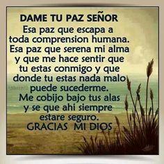 Dame to Paz Senor Faith Quotes, Bible Quotes, Me Quotes, Bible Verses, Qoutes, Spanish Prayers, Frases Humor, Spiritus, God Prayer