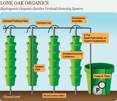 Hydroponic Garden Infographic by daftgirly, via Flickr