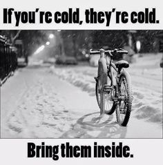 If you're cold, they're cold. Bring  your bicycle inside.
