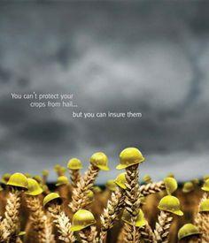 crop insurance ad