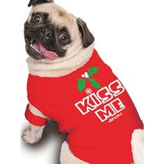 holiday pet outfits - Google Search