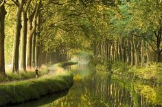 Canal du Midi, France                     BEAUTIFUL
