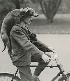 man and his best friend