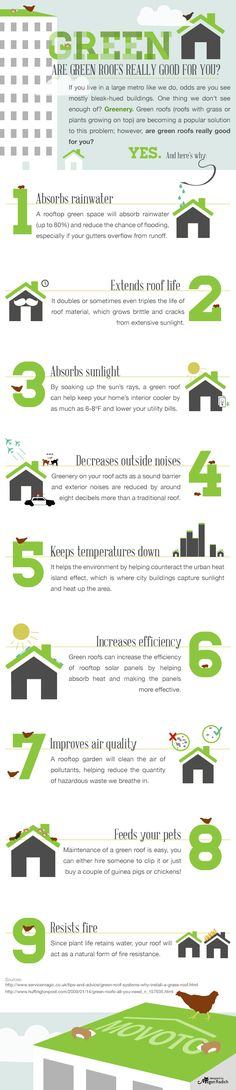 A list of 9 reasons to add a green roof to your home when renting or owning and how it saves you money.