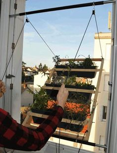 Experimenters in small urban gardening, Barreau & Charbonnet have developed a pivoting window garden that maximizes space