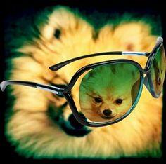 My Bailey :)