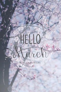 Hello March Images and Pictures Hello March Wallpaper Hello March Images, Hello January, Happy March, Hello Thursday, Seasons Months, Days And Months, Months In A Year, Weather Seasons, 12 Months