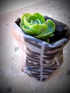 Experiment MOM: Upcycled Challenge: Newspaper to planter pots #freefromtrash