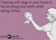 Cleaning with dogs in your house is brushing your teeth while eating oreos . I Love Dogs, Puppy Love, Cute Dogs, Dog Quotes, Funny Quotes, Funny Dogs, Funny Animals, Yorkie Dogs, Yorkshire Terrier Puppies