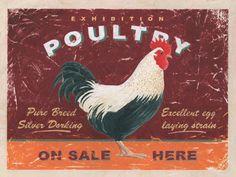 vintage chicken signs - Google Search