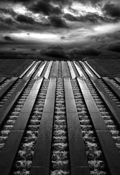 22 18x36 2010 Best Of Neocon Gold Winner Images Carpet