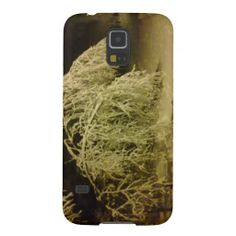 Winter tree cases for galaxy s5